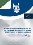 Situación y Percepción del Sector Cementero Español en Materia de Prevención de Riesgos Laborales.pdf