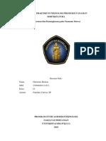 Laporan Praktikum TPT Hortikultura