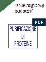 Purificazione proteica