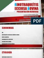 Presentación Nerviosa de La Rinotraqueítis Bovina