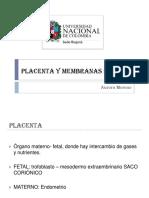 placenta y membranas fetales.pdf
