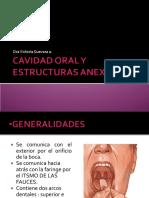 2._CavidadOral__126__0