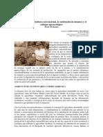 1.1 Crisis de La Agricultura Convencional