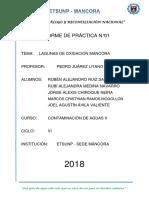 TRABAJO FINAL AGUAS 2.docx