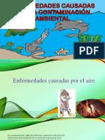 Enfermedades Causadas Por La Contaminación Ambiental