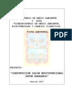 Ficha Ambiental Const. Salon Multif. Juchuy Barranca