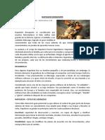 NAPOLEON BONAPARTE.docx