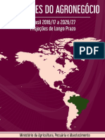 projecoes-do-agronegocio-2017-a-2027-versao-preliminar-25-07-17