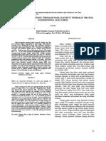 daun tunggal.pdf