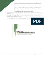 Manual de Project 2003