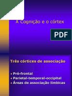 Aula4ACogniçãoeoCórtex