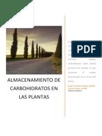 315850454-Almacenamiento-de-Carbohidratos-en-Las-Plantas.docx