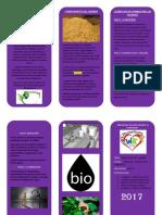 Triptico Del Bioetanol