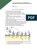 3 Sistemas de Membranas Citoplasmáticas 2015