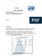 Formaciones de Tight Gas Documento Spe