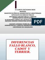 Fallo Blanco, Cadot y Terrier. Diferencias.