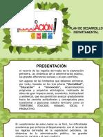 Plan de Desarrollo Diapositivas (6)