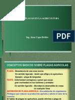 Clase Plagas