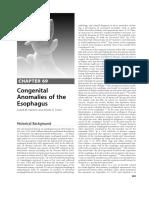 Atresia Esofagus.pdf