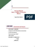 aula2-conflito-princnegoc12