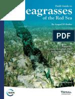 Red Sea Seagrass Guide 2016 Web Final