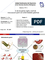 Helicobacter pylori CagA y VacA.pptx