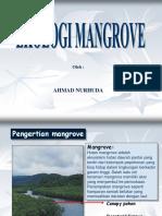 Ekologi Mangrove