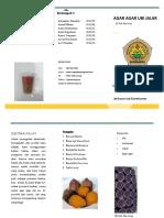 brosur teloo repisi jilid 2.pdf