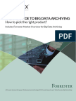 Forrester White Paper the CIO Guide to Big Data Archiving