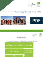 6.1 Equidad e Inclusión - RedEG_ Andrés Moyano SMI Chile 2017