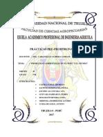 Problemas Ambientales en El Peru y El Mundo