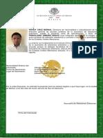 Carta de Naturalizacion
