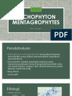 TRICHOPHYTON MENTAGROPHYTES PPT
