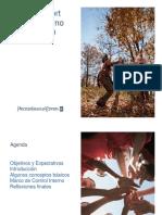 COSO REPORT.pdf