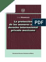 PROTECCION DE LOS MENORES