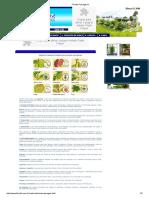 Doenças plantas - Floraliz