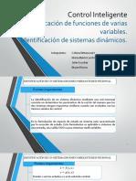 Identificación de funciones de varias variables