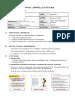 Formato de Sesión de Aprendizaje Vivencial
