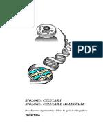 Protocolos BCI_BCM 2005-06.pdf