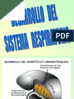 08. Desarrollo Del Sistema Respiratorio