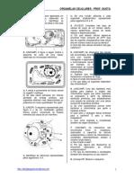 lista_organelas 222.pdf