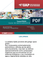 LIPIDOS(1).pdf