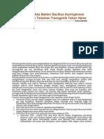 Rekayasa Genetika Bakteri Bacillus Thuringiensis Dalam Perakitan Tanaman Transgenik Tahan