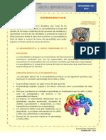 2 Neurodidactica Articulo (1)