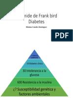 Pirámide de Frank Bird Diabetes