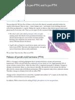 Secret Life of the Parathyroids