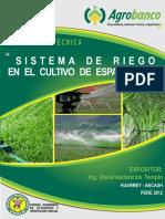 016-a-esparragos.pdf