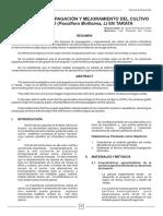 85369826-Propagacion-de-Tumbo.pdf