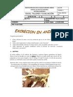 Grado07 Periodo3 Guia03 b.pdf