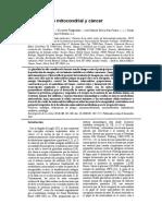 Metabolismo Mitocondrial y Cáncer Traducción